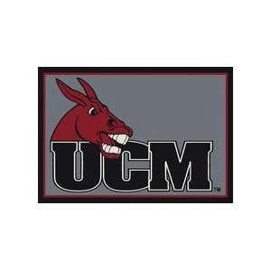 Missouri State Fighting Mules 4 x 6 Team Door Mat: Sports & Outdoors