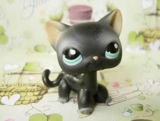 LITTLEST PET SHOP Black Halloween Kitty Cat #994