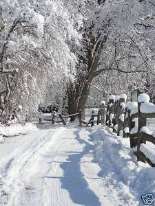Snowy Sunny Day Country Winter Photography Fence Creek Pure Country