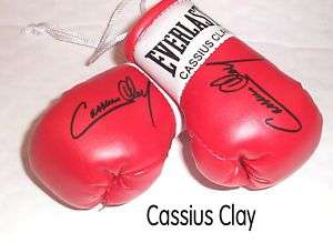 Autographed Mini Boxing Gloves Sugar Ray Robinson