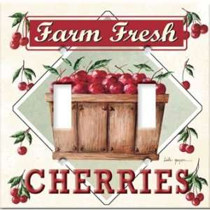 Switch Plate Cover Art Farm Fresh Cherries Food DBL