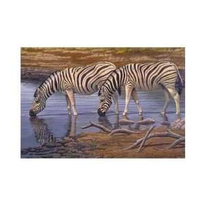 Zebras Drinking Poster Print: Home & Kitchen