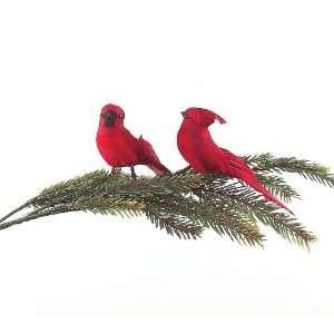 Melrose International Feather and Styrofoam Cardinal, Set