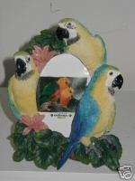 BLUE & GOLD MACAW PARROT PICTURE PHOTO FRAME 3 1/2 x 5