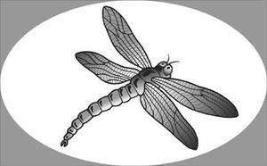 DRAGONFLY static cling etched glass window decal