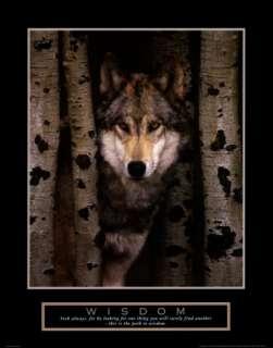 Wisdom Gray Wolf Art Print
