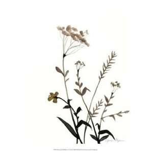 Watermark Wildflowers X by Jennifer Goldberger 13x16: Home