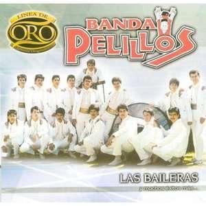 De Oro Las Baileras Y Muchos Exitos Mas, Banda Pelillos Latin