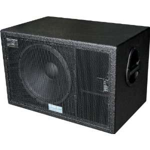 SL Steve Lukather 600W Active Guitar Subwoofer Musical Instruments