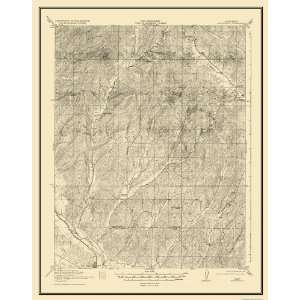 USGS TOPO MAP SAN MIGUEL QUAD CALIFORNIA (CA) 1919 Home