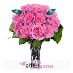 12 Pink Designer Long Stem Roses Grocery & Gourmet Food