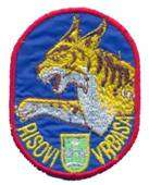 SERBIA ARMY   VRS / AIR FORCE   PILOT ,sleeve patch