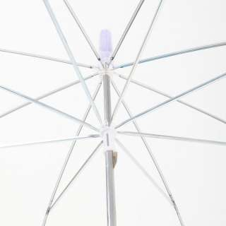 Drizzles Ladies Clear Dome Umbrella Brolly Purple Trim