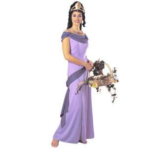 Home » Grecian Princess Adult Costume