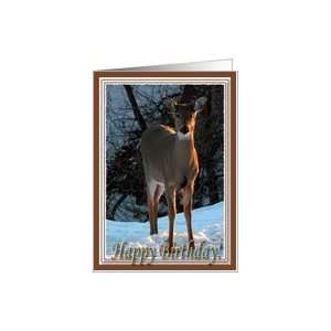 Deer in the snow, Happy Birthday Card Health & Personal